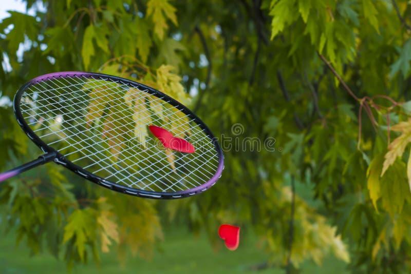 Liebe verh?ltnisse Spielen in der Liebe Valentinsgru? `s Tag Spiel in der Liebe Unterbrochenes Inneres Gr?ner Hintergrund lizenzfreies stockbild