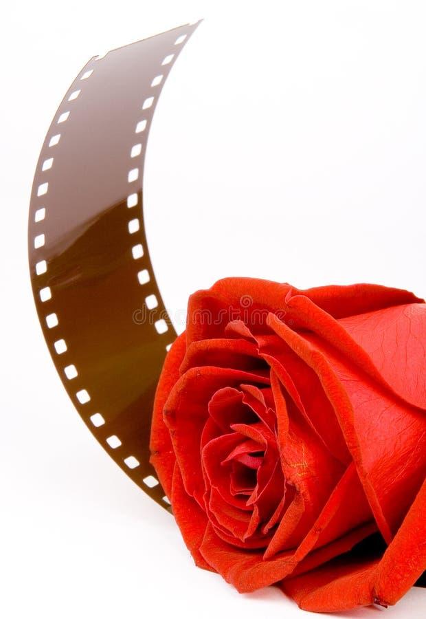 ?Lieben Sie Film? Vertikale stockbild