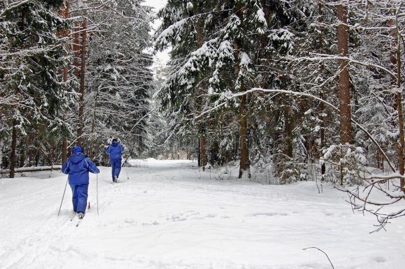 Lieben Sie Paarskifahren im Wald an einem reizenden Wintertag stockfoto