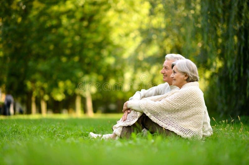 Liebende ältere Paare, die auf grünem Gras sitzen stockbild