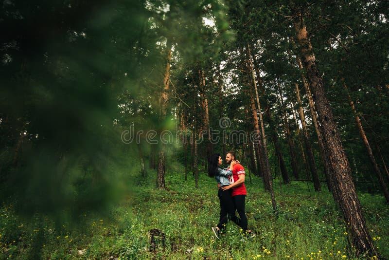 Liebende Paare, die in den Koniferenwald gehen stockfotografie