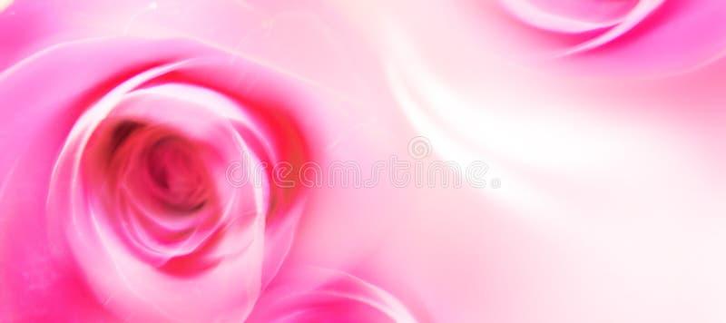 Liebes-Gruß-Karte - Str.-Valentinsgruß - Blumen - Rosen stockfotos