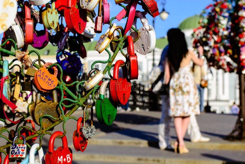 Liebes-Vorhängeschlösser auf einem Baum lizenzfreie stockbilder