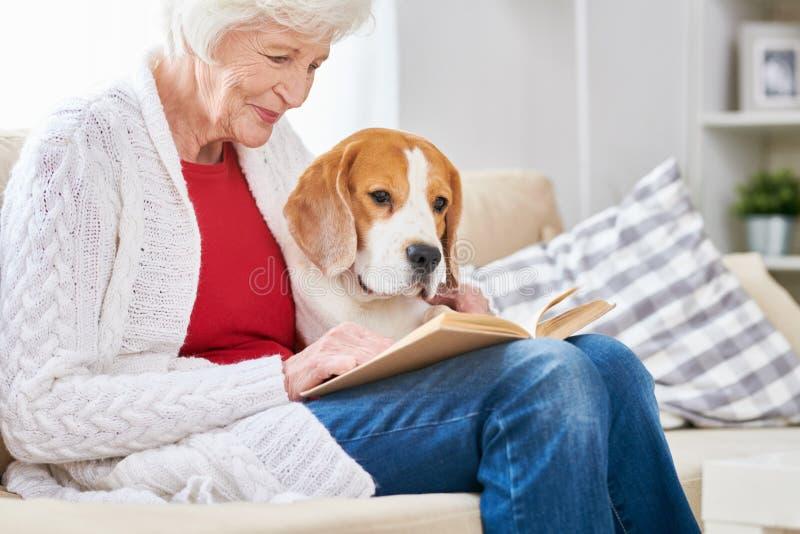 Liebevolle ältere Frauen-Lesung mit Hund stockfotografie
