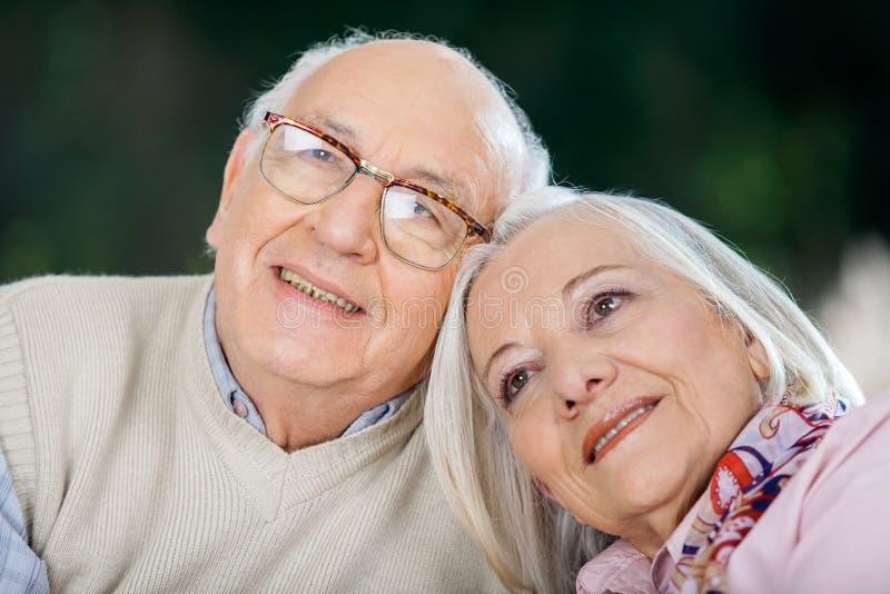 Liebevolle ältere Paare, die weg schauen stockfotografie