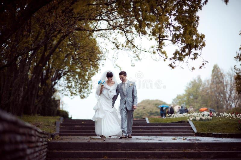 Liebevolle Hochzeitspaare auf einem Weg im Park lizenzfreies stockbild