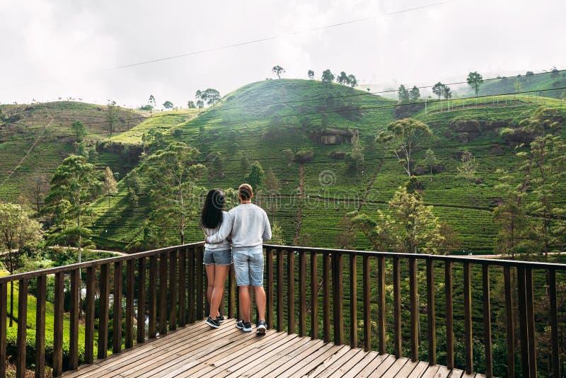 Liebevolle Paare auf einer Teeplantage stockfoto