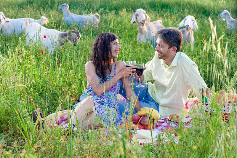 Liebevolle Paare, die mit Rotwein feiern stockbild