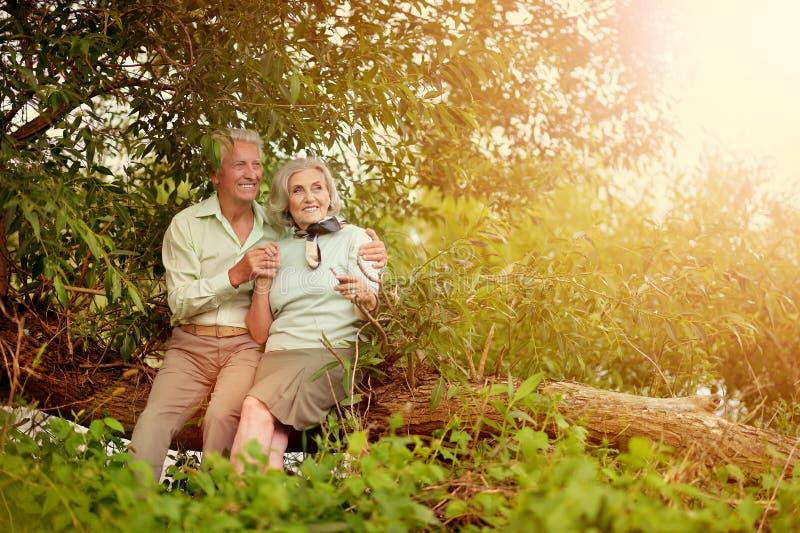 Liebevolle reife Paare, die auf Baumstamm sitzen lizenzfreie stockfotos