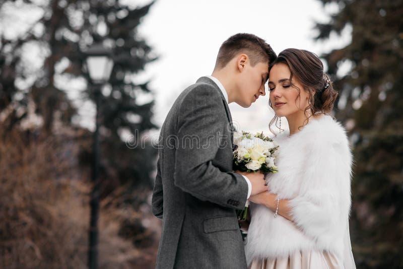 Liebevoller und schöner Braut- und Bräutigamstand in einer Umarmung im Winterwald stockfoto