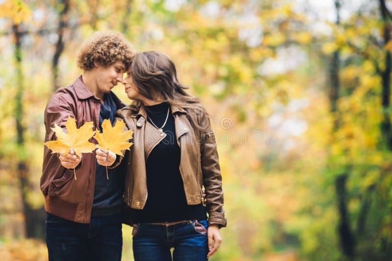 Liebevolles glückliches Paar im Herbst im Park, der Herbstahornblätter in den Händen hält lizenzfreies stockfoto