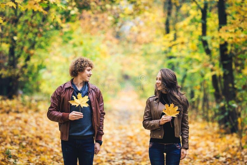 Liebevolles glückliches Paar im Herbst im Park, der Herbstahornblätter in den Händen hält stockfotografie