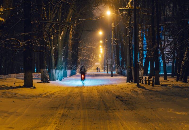 Liebhaber im Winter parken am Abend stockfoto
