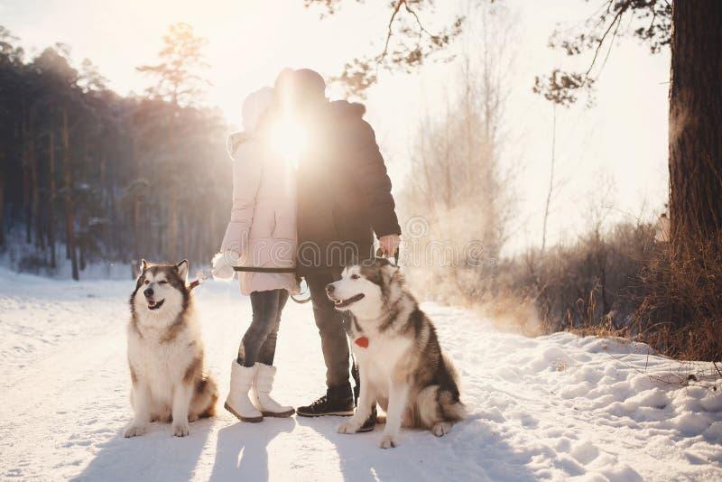 Liebhaberpaar geht in Schnee mit Hund stockbilder