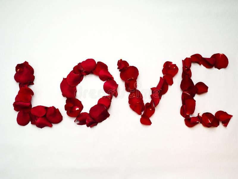Liefde die met roze bloemblaadjes wordt geschreven royalty-vrije stock fotografie