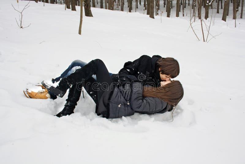 Liefde in het de winterbos stock afbeelding