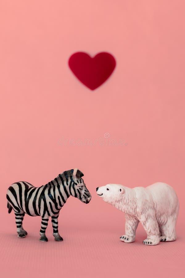 Liefde tussen de verschillende en tegenstanders: een beer, vleesetend uit een koude habitat en een zebra, herbivoren uit een hete royalty-vrije stock foto's