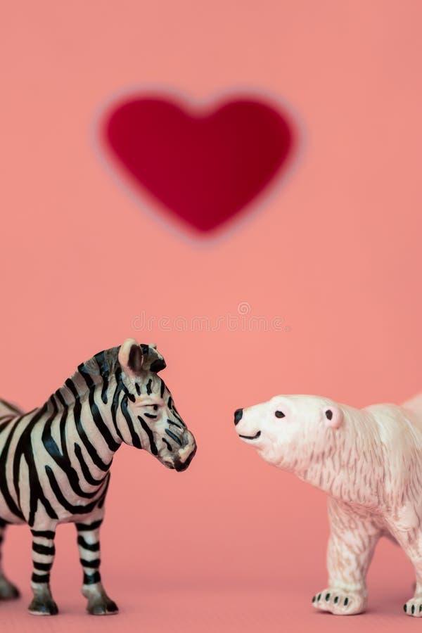 Liefde tussen de verschillende en tegenstanders: een beer, vleesetend uit een koude habitat en een zebra, herbivoren uit een hete royalty-vrije stock afbeelding