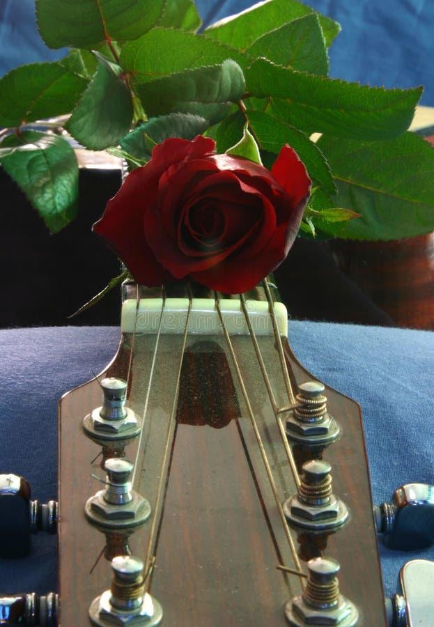 Download Liefde van muziek 5 stock foto. Afbeelding bestaande uit instrument - 276588