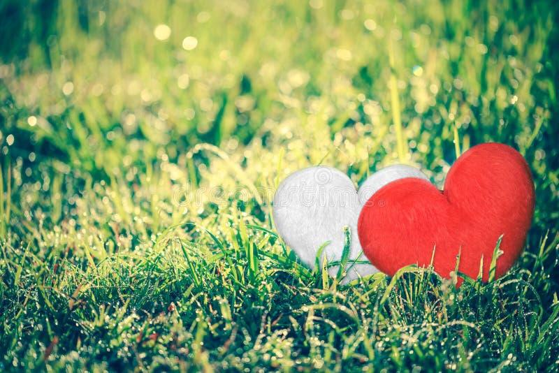 Liefdeconcept voor de Dag van Valentine ` s Hart-vorm voor liefdesymbolen o stock fotografie