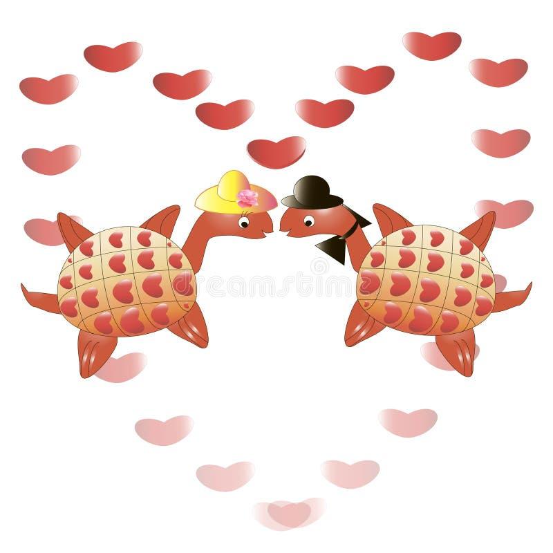 Liefdeschildpadden stock afbeelding