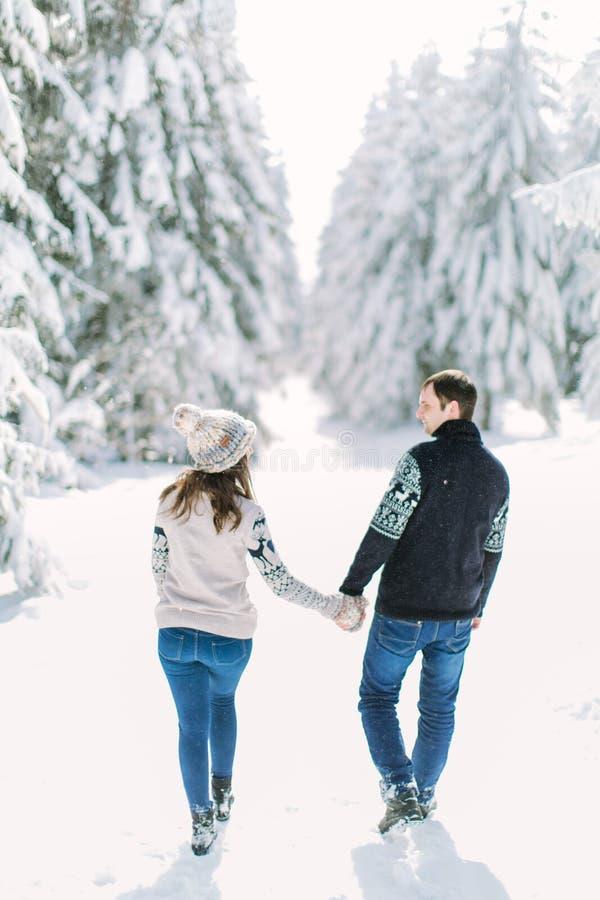 Liefdeverhaal in het de winter bos Jonge romantische paar openlucht De dagconcept van de valentijnskaart ` s stock foto