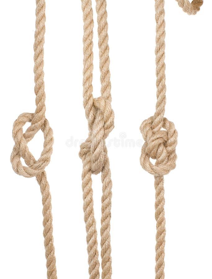 Lieferungsseile mit einem Knoten lizenzfreies stockfoto