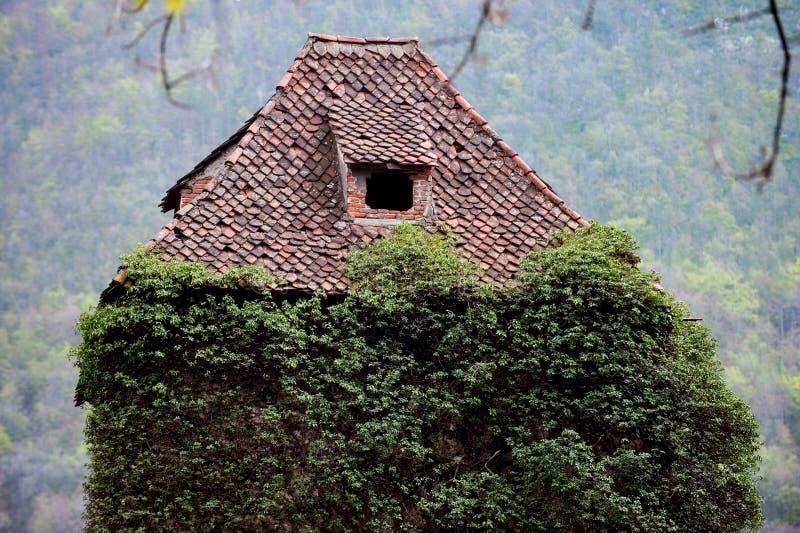 Lierre envahi sur la maison abandonnée image stock