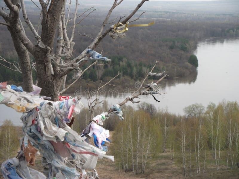 Lieu saint, montagne sainte, forêt et rivière photos libres de droits