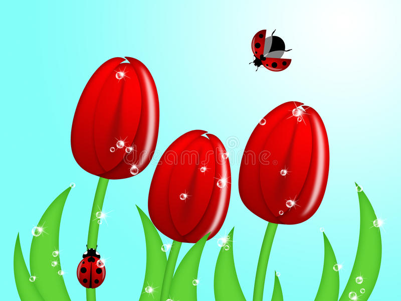 Lieveheersbeestje dat op de Stam van de Bloem van de Tulp beklimt royalty-vrije illustratie