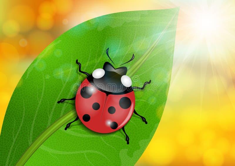 Lieveheersbeestje op groen blad royalty-vrije illustratie