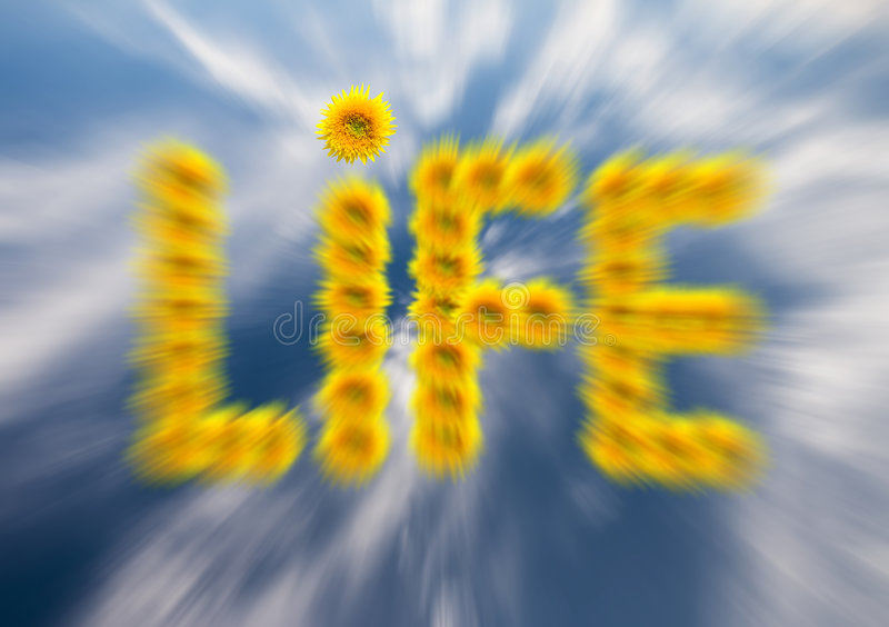 Download Life stock image. Image of cirrus, energetic, color, flora - 3778379