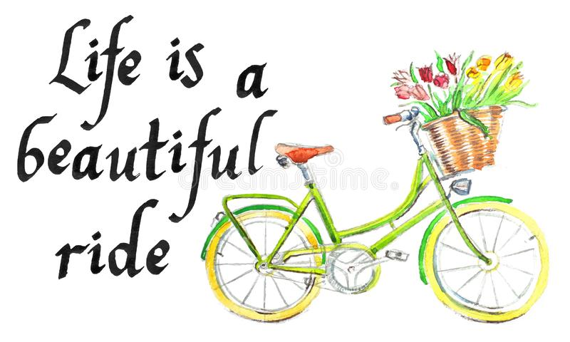 `Life is a beautiful ride`, light green bicycle with a basket of flower - hand drawn watercolor illustration. `Life is a beautiful ride `, light green bicycle stock illustration