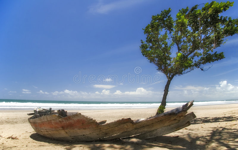 Download Life And Death Stock Photography - Image: 3162872