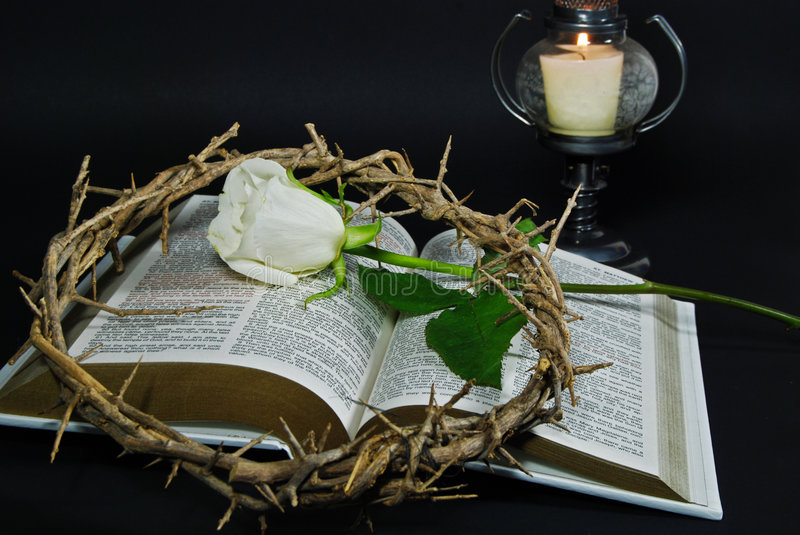 crown of thorns and rose on Bible royalty free stock photos