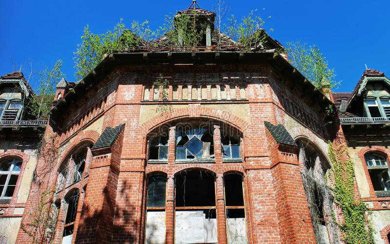 Life Finds a Way. Detail of the facade and overgrown roof of a building of the abandoned Beelitz sanatorium, near Berlin, Brandenburg, eastern Germany