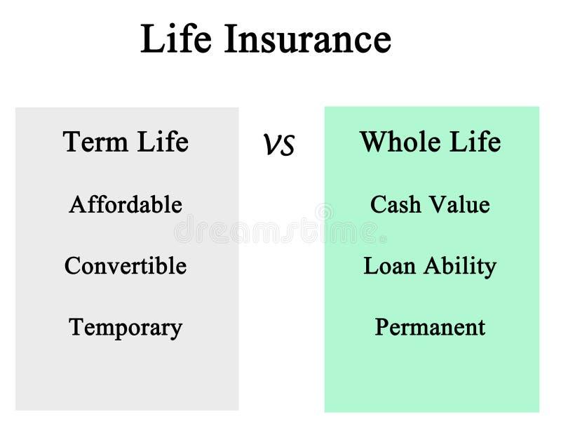 Term life vs whole life. Life Insurance: term life vs whole life stock illustration