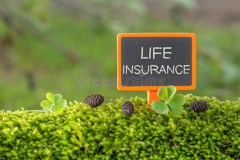 Life insurance text on small blackboard royalty free stock image