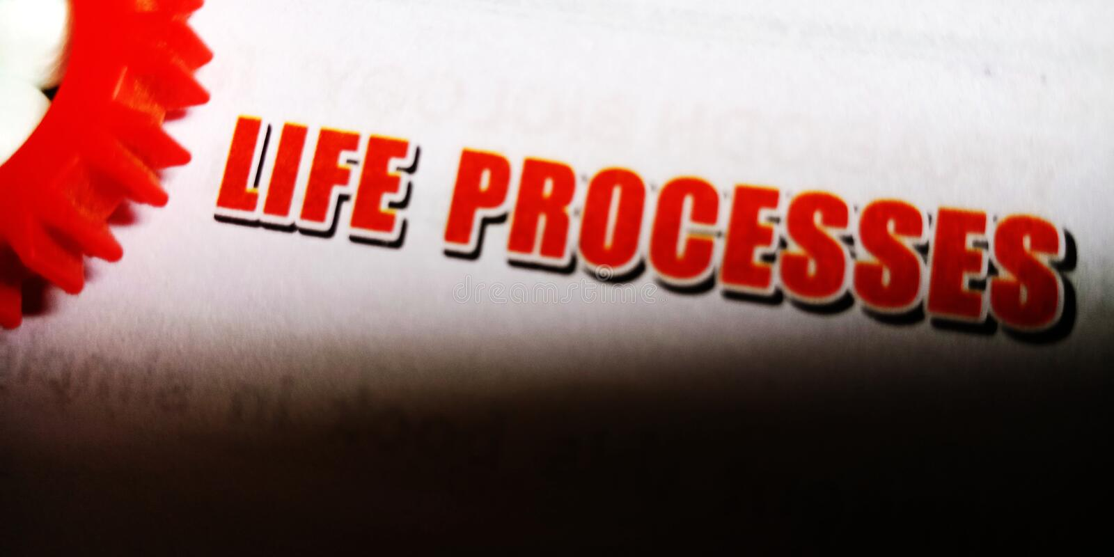 Life processes written on red colour text on white paper sheet royalty free stock photography
