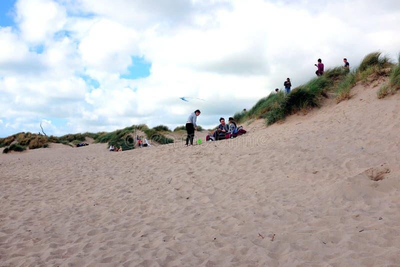 Life among the sand dunes stock photo