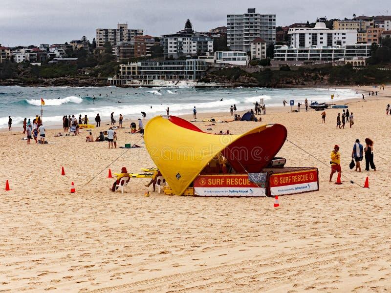 Bondi Beach Life Savers on an Overcast Summer Morning, Sydney, Australia. Life savers or guards, surf rescue, at the yellow sand Bondi Beach, Sydney, NSW royalty free stock photos