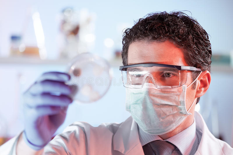 Life science researcher observing cells in petri dish. Mask and goggles protected life science researcher observing potentially infectious cells in petri dish stock photography