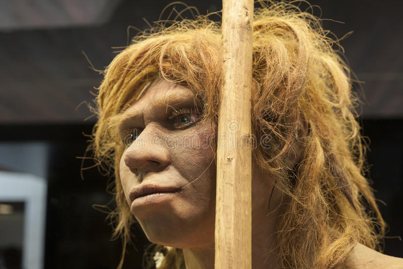 Life-sized sculpture of Neanderthal female royalty free stock photo