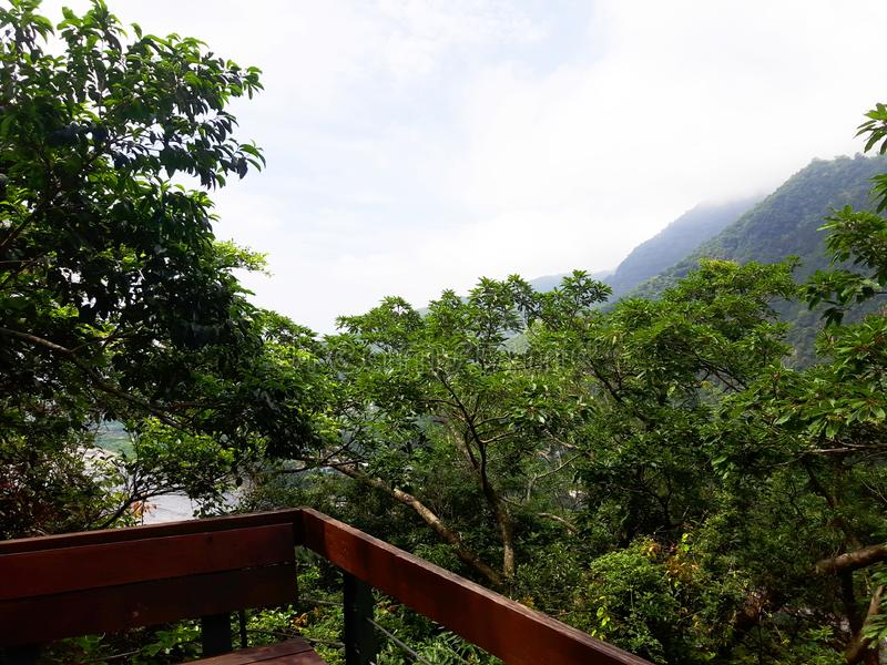 life in Formosa Island stock photo