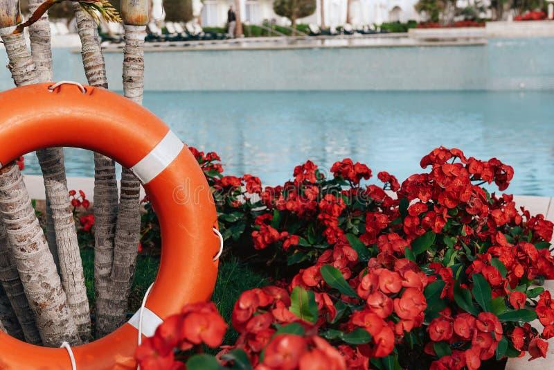 Lifebuoy που στέκεται δίπλα στην πισίνα στοκ φωτογραφίες