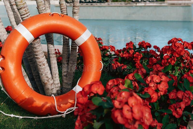 Lifebuoy που στέκεται δίπλα στην πισίνα στοκ φωτογραφία με δικαίωμα ελεύθερης χρήσης