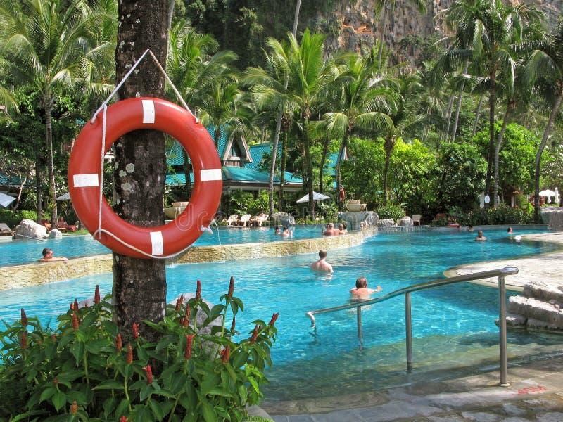 lifebuoy 人们 旅馆 室外水池在热带 免版税库存图片