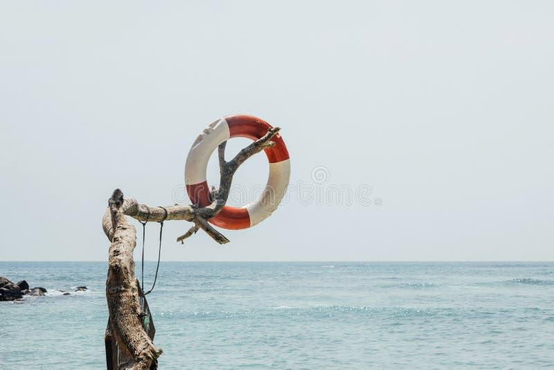 Lifebuoy na plaży z niebieskim niebem zdjęcie stock