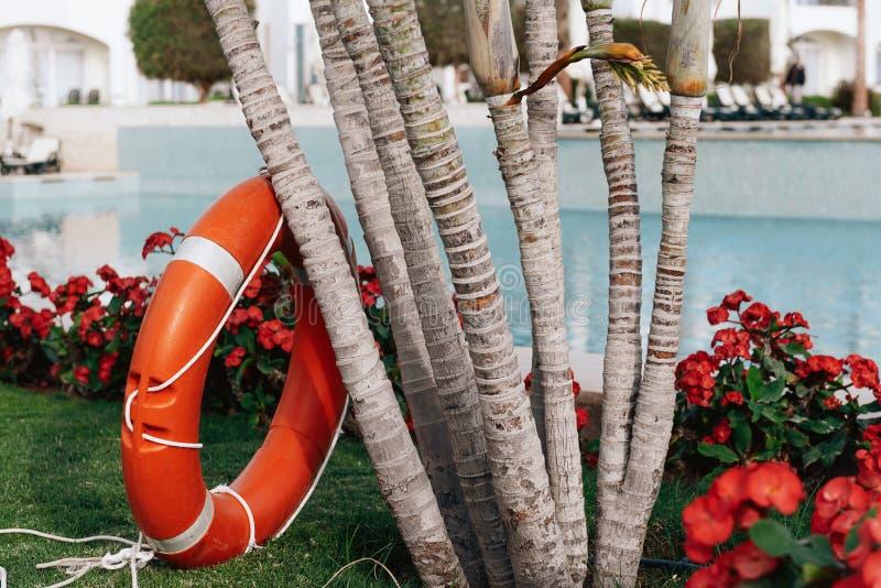 Lifebuoy pozycja obok basenu obrazy royalty free