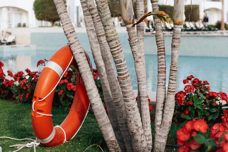 Lifebuoy standing next to the swimming pool royalty free stock images